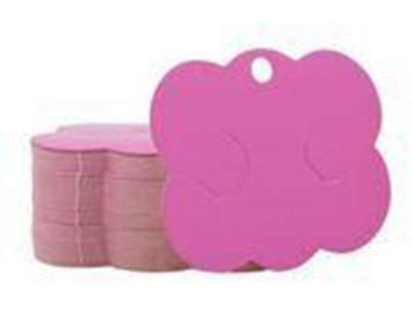Papelete Cartela Embalagem Bico Pato Nuvem
